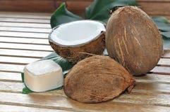 Soap coconut Royalty Free Stock Photo