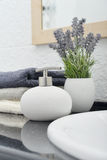 Soap dispenser Stock Photography