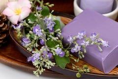 Soap Five-leaved chaste tree, Chinese chaste, Indian privet, Negundo chest nut (Vitex trifolia Linn.) Royalty Free Stock Images