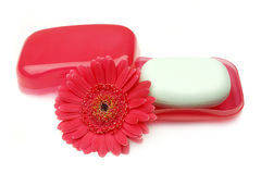 Soap and flower. Royalty Free Stock Image