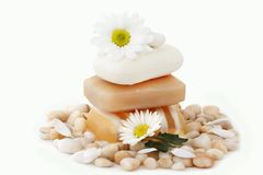 Soap, flower and sea stones Stock Photography
