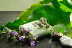 Soap with flowers and calla leaf Stock Photography
