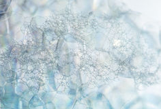 Soap foam bubbles macro Royalty Free Stock Images