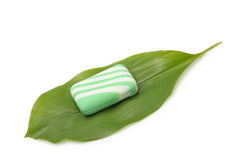 Soap on a green leaf of a lily of the valley Royalty Free Stock Images