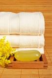 soap handdukar Arkivbilder