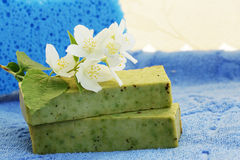 Soap and  jasmine. Soap of the manual work with the aloe and the jasmine Royalty Free Stock Images