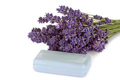 Soap of Lavender Royalty Free Stock Image