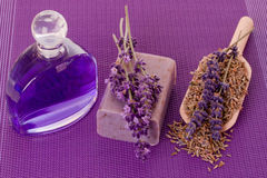 Soap of lavender Stock Images