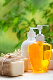 Soap - liquid and bars Stock Photos