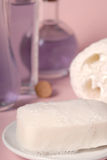 Soap and luffa Stock Images