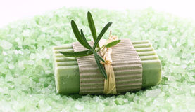 Soap with natural ingredients Royalty Free Stock Photos