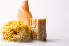 Soap, natural sponge and shower gel Stock Photos