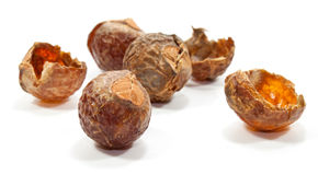Soap nuts. Some soap nuts on white background, isolated for a healthy life Stock Photography