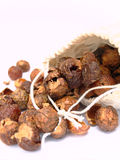 Soap nuts Stock Image