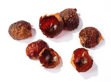 Soap nuts Stock Photo