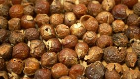 Soap nuts Indian soapberry or washnut, Sapindus mukorossi reetha or ritha from the soap tree shells are used to wash