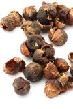 Soap Nuts Royalty Free Stock Photo