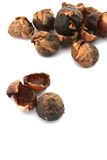 Soap Nuts Stock Images