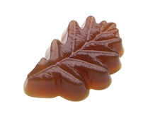 Soap oak leaf Stock Image