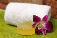 Soap and orchid. Soap and hibiscus at a outdooor shower Stock Image