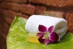 Soap and orchid. Soap and hibiscus at a outdooor shower Royalty Free Stock Photo