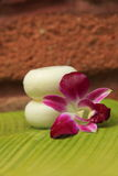 Soap and orchid. Soap and hibiscus at a outdooor shower Stock Photo