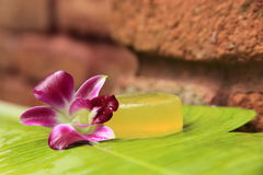 Soap and orchid. Soap and hibiscus at a outdooor shower Stock Photos