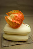 Soap and physalis Stock Photography