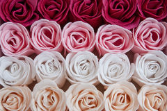 Soap Roses. Rows of red, pink, white & cream soap rose buds Royalty Free Stock Photography