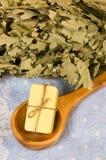 Soap in sauna ladle Stock Images