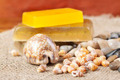 Soap, sea shell and pebbles Stock Image