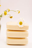 Soap for sensitive skin Stock Images