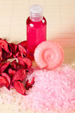 Soap, shower gel and salt, fragrant flowers petals Royalty Free Stock Photos