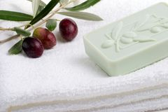 Soap spa set Royalty Free Stock Image