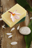 Soap and spa stone Royalty Free Stock Photos