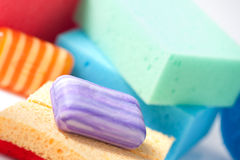 Soap and sponge Stock Images