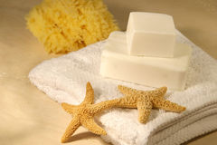 Soap and starfish stock photos