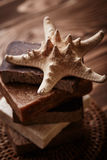 Soap with starfish Royalty Free Stock Photos
