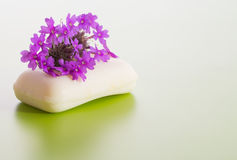 Soap topped with purple Prairie Verbena flower Stock Photo