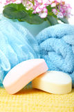 Soap and towel. Stock Photography