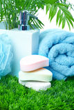 Soap and towel. Stock Images