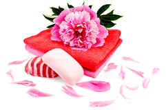 Soap with a towel and a pion Stock Photography
