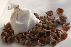 Soap (washing) nuts Royalty Free Stock Image