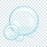 Soap water bubbles. Illustration isolated on transparent background. Graphic concept for your design vector illustration