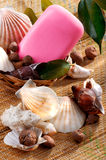 Soap in a wicker basket with seashells Royalty Free Stock Photography