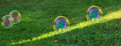 Soapbubbles на зеленой естественной предпосылке Стоковое фото RF