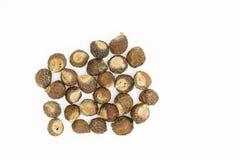 Soapnuts en blanco Foto de archivo libre de regalías