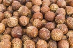 Soapnuts (reeta) - detergente natural Imagen de archivo libre de regalías