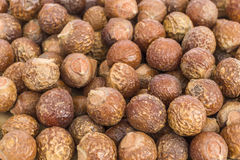 Soapnuts (reeta) - naturligt tvättmedel Royaltyfri Bild