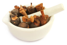 Soapnuts and sweet flag in a mortar with pestle Stock Images
